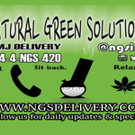 Natural Green Solutions Inc - Oakland