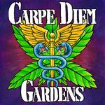 Carpe Diem Gardens - Oceanside