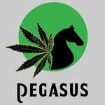Pegasus - Cerritos