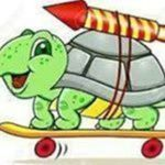Green Turtle Delivery
