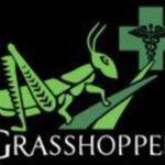 Grasshopper OC