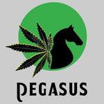 Pegasus - Lakewood