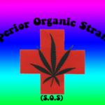 Superior Organic Strands