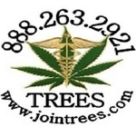 Trees By Healthy Living - Pleasanton