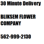 Bliksem Flower Company