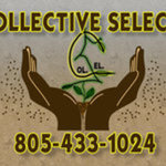 Collective Selects - Camarillo