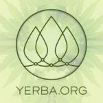 Yerba - Berkeley