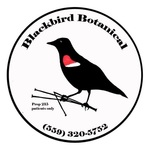 Blackbird Botanical Deliveries - Fresno