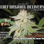 Cali Organix Delivery (C.O.D.) - Concord
