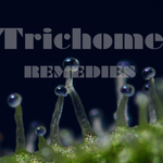 Trichome Remedies