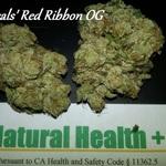 Natural Health Plus