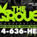 T.G.C. (THE GROVE COOP) 5 GRAM 8TH F.T.P.