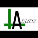LA Buds