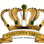EXCLUSIVE 25 CAP PRE-ICO