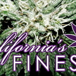 Californias Finest CO-OP- WE ARE BACK!! FREE MEDS EVERY ORDER!!BEST QUALITY-CHEAPEST PRICES!CALL NOW