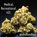 Square_medical_recreational_421