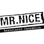 Square_mr_nice