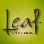 Leaf On The Mesa - Recreational