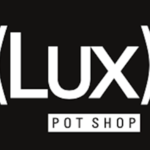 Square_lux__pot_shop