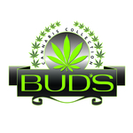 Square_buds_logo