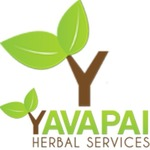 Yavapai Herbal - Cottonwood
