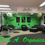 PSA Organica