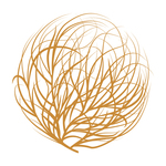 Square_twc-tumbleweed-color-logo-mark