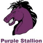 Purple Stallion