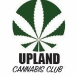 marijuana dispensary cannabis club evaluations
