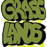 Square_grasslands.halved