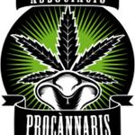Square_procannabis-calafell