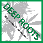 Square_deep_roots_logo
