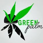 Square_green_palm_torrevieja_logo