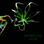 Square_og_private_club