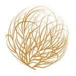 Square_1503433884-large_twc-tumbleweed-color-logo-mark
