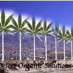 DESERT ORGANIC SOLUTIONS - Palm Springs 92258