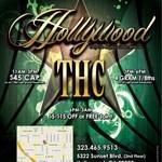 Hollywood 215