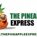 The PineApple Express Delivery San Jose