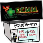 ECMM Venice