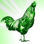 theyodelingchicken