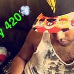 420rainbowpenguin
