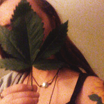 cannabiscobree
