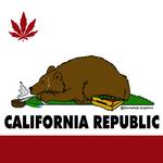 Square_california_flag